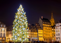 Christmas tree in Strasbourg, France